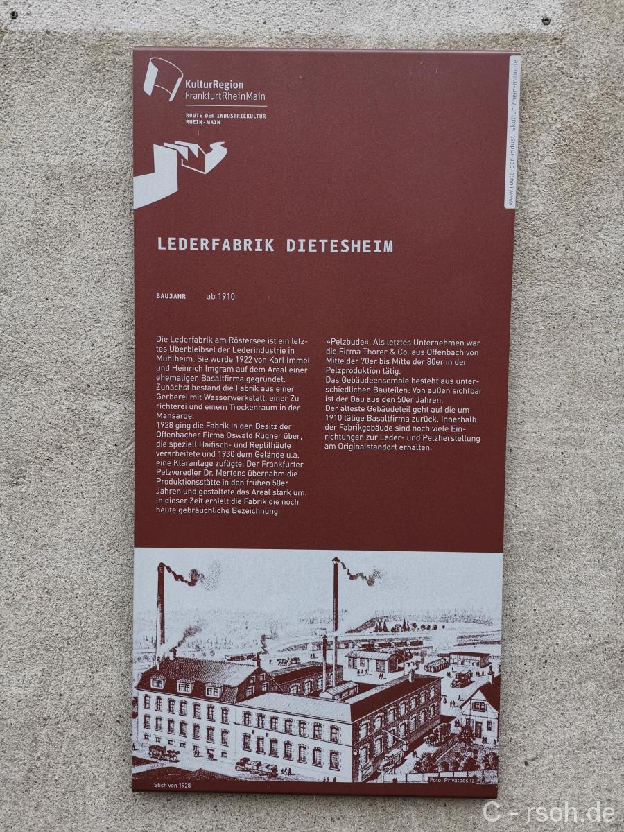 LederDietes-1